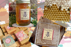 For the Love of Honey: Beekeeper Carla Marina Marchese and her pursuit of honeyed perfection