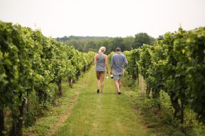 Vineyard Hopping