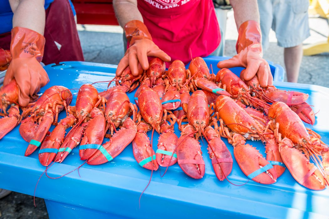 SEAFOOD FESTIVALS WORTH THE TRIP