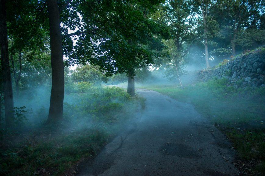Franklin Park - _Fog x FLO's Fog x Ruins_ by Melissa Ostrow 2